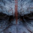 Hemos perdido el mundo en el primer trailer de Dawn of the Planet of the Apes