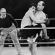 chaplin fights