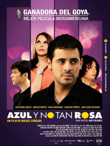 azul_y_no_tan_rosa-cartel