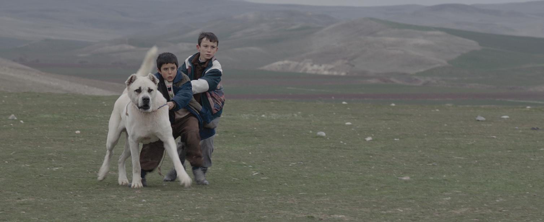 Sivas Film (5)