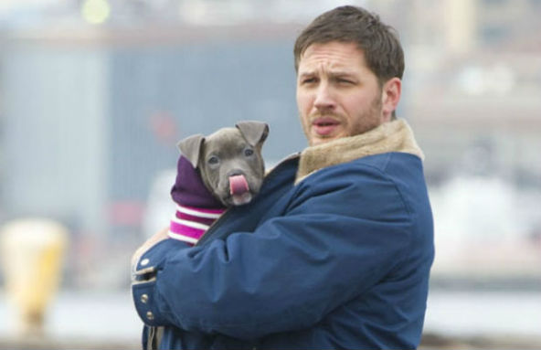 tom-hardy-pit-bull-movie