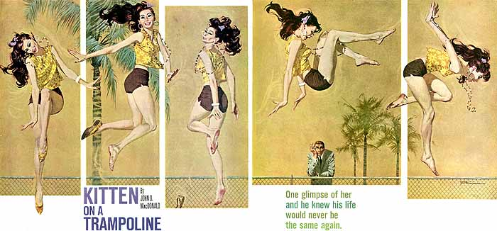 mcginnis_kitten_p8apr61
