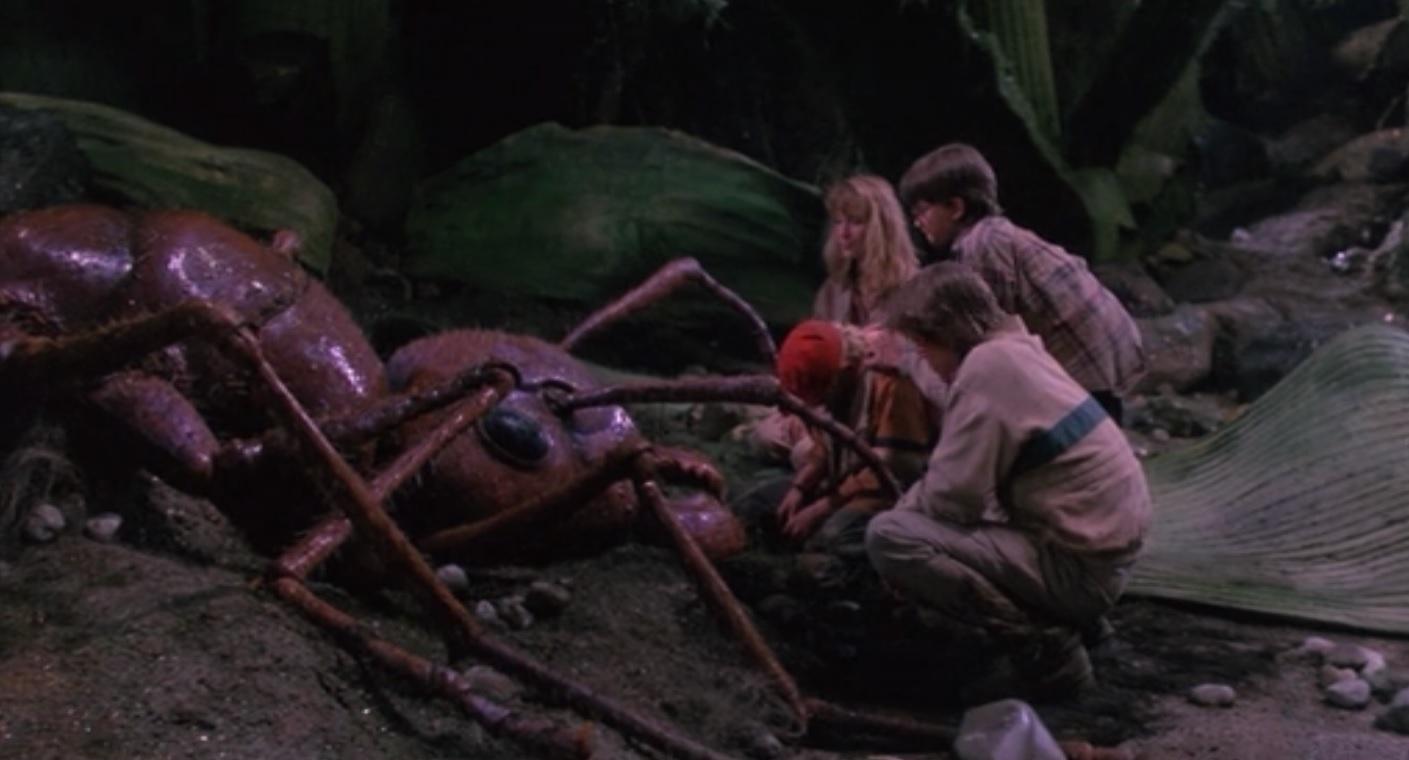 Muerte d ela hormiga