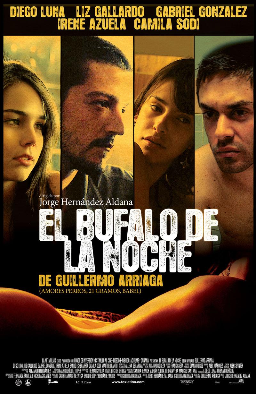 bufalo-de-la-noche-el-648129l