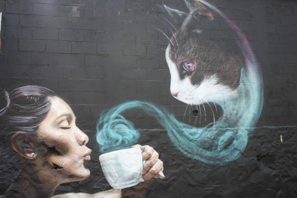 Cat Movie Lee